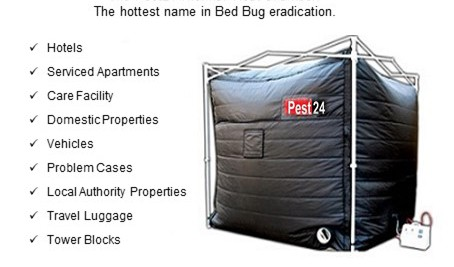 Bed bug heat treatment service fumigation kill bedbugs for Bed bug heat box