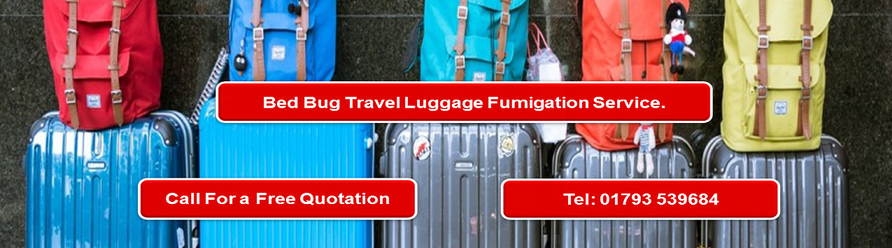 Bed Bug Heat Treatment Airport Luggage and back pack collection service.